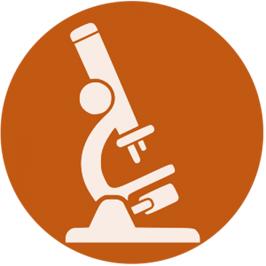 Recherche clinique & pharmacovigilance – Parcours en APPRENTISSAGE